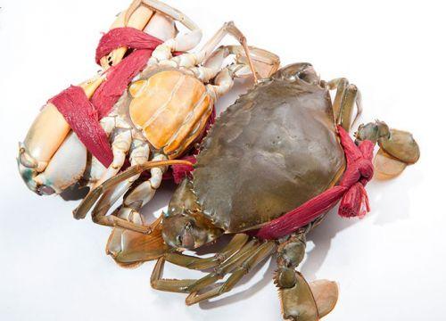 Mẹo chọn cua ghẹ biển ngon đúng nghĩa bí quyết từ nông dân
