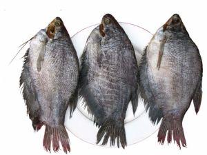 Khô cá sặc bao nhiêu 1kg?