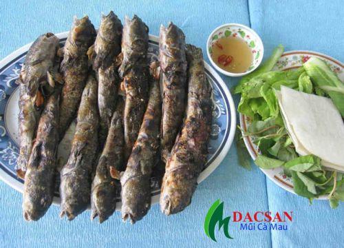 Các món ngon chế biến từ cá thòi lòi (cá leo cây)