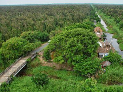 Cùng khám phá Rừng tràm U Minh Hạ và thưởng thức sản vật nơi đây
